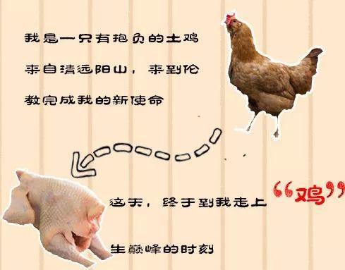 藏得很深的窑鸡,隐匿江湖的厨神,一般人找不到